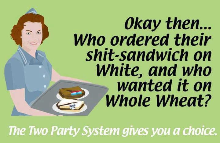 The two party system gives you a choice