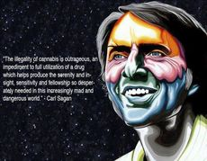 Carl Sagan THe illegality of cannabis is outrageous