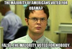 the majority of americans voted for obama?