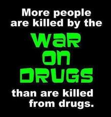 more people are killed by the way on drugs than are killed from drugs