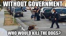 without government who would kill the dogs