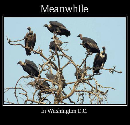 Meanwhile in Washington D.C.