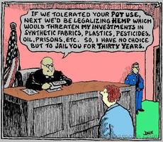 If we tolerated your pot use