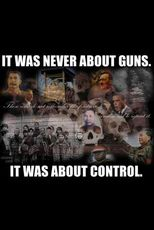 It was never about guns