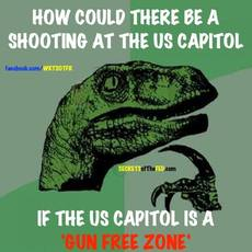 How could there be a shooting at the us capitol if the us capitol is a gun free zone?