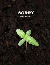 Sorry I'm Illegal