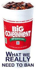 Big government what we really need to ban