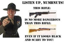This rifle is no more dangerous than this rifle