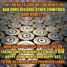 You want to ban guns because other countries have done it?
